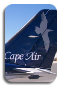 Cape Air image